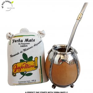 Gajo-Mini-Alpaca-Silver-Yerba-Mate-Set